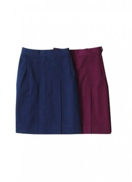 Girls Pleated Day Skirt